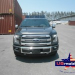 2015 Ford F150 Crew Cab Short Box 4x4 Platinum